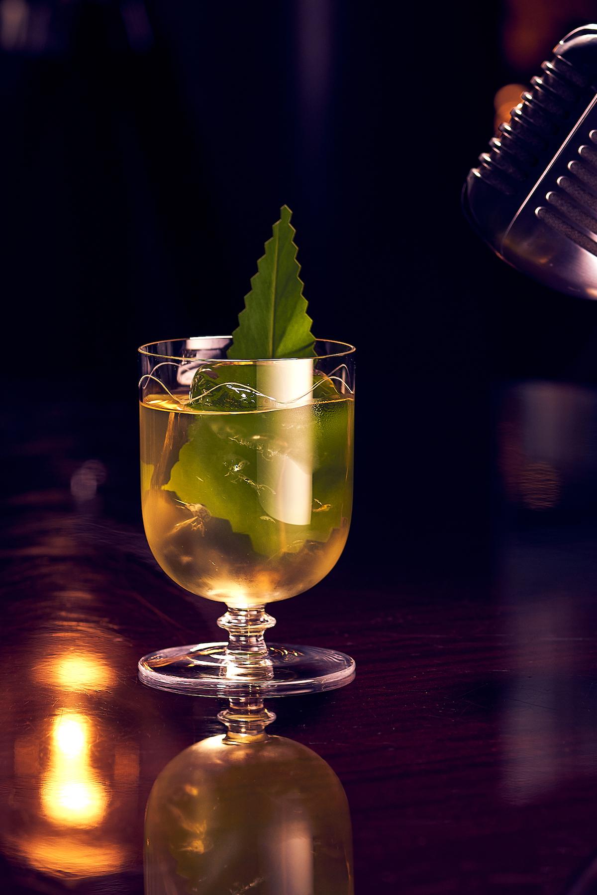 Cocktail Photo Soul Portrait